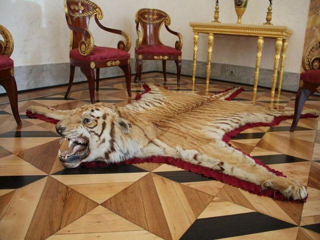 шкура тигра в интерьере