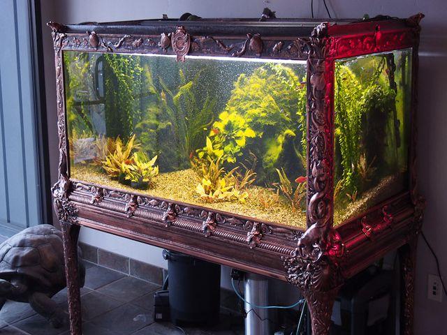 Античный аквариум