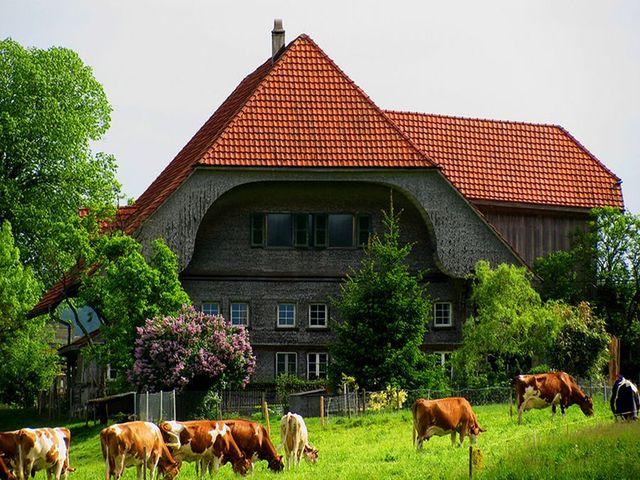 традиционный альпийский домик