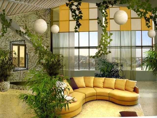 обилие живых растений в комнате